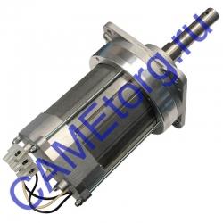 Электродвигатель для G2500 в сборе GARD 119RIG090